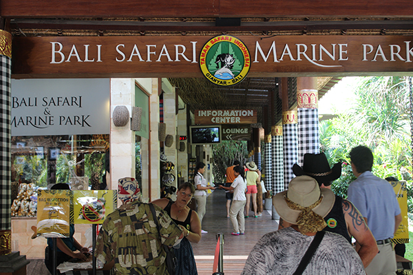 bali safari and marine park ticket price – harga tiket murah